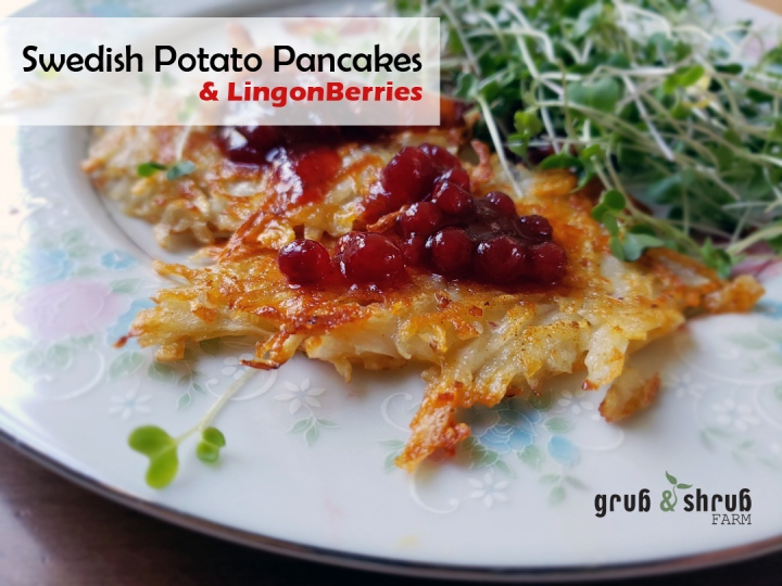 Swedish Potato Pancakes in 5 easy steps